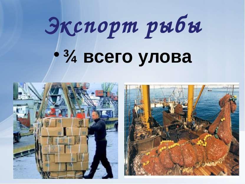 Экспорт рыбы ¾ всего улова