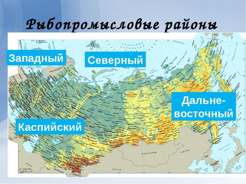 Рыбопромысловые районы Северный Западный Дальне- восточный Каспийский