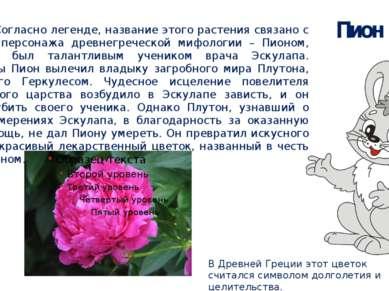 Пион В Древней Греции этот цветок считался символом долголетия и целительства...