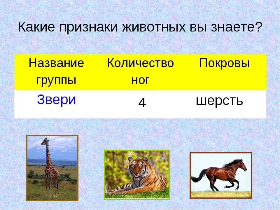 Какие признаки животных вы знаете? 4 шерсть Название группы Количество ног По...