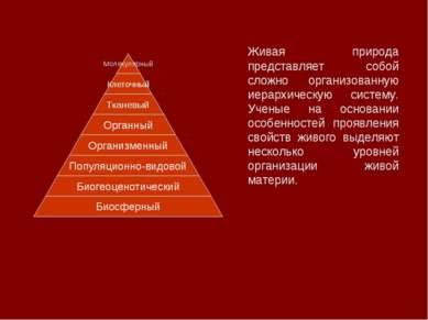 Живая природа представляет собой сложно организованную иерархическую систему....