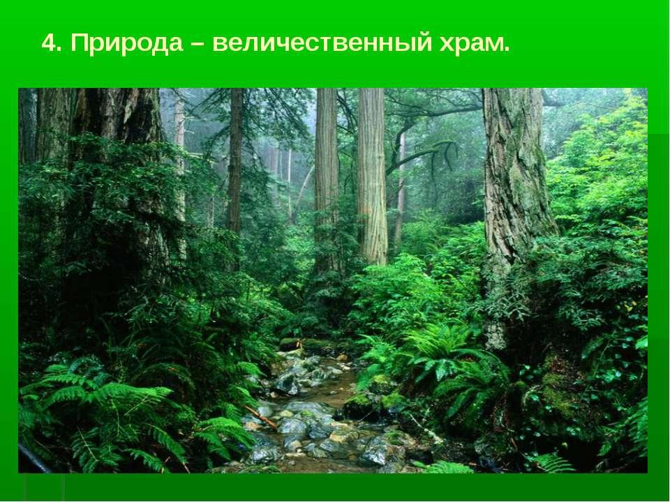 4. Природа – величественный храм.