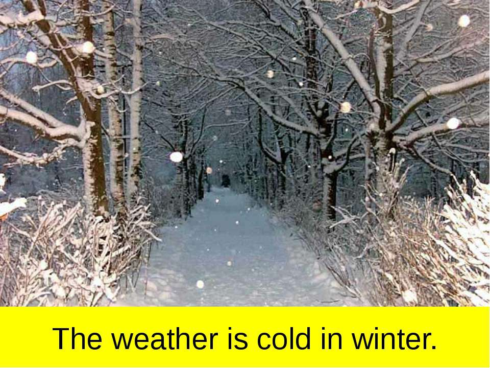 The weather is cold in winter.