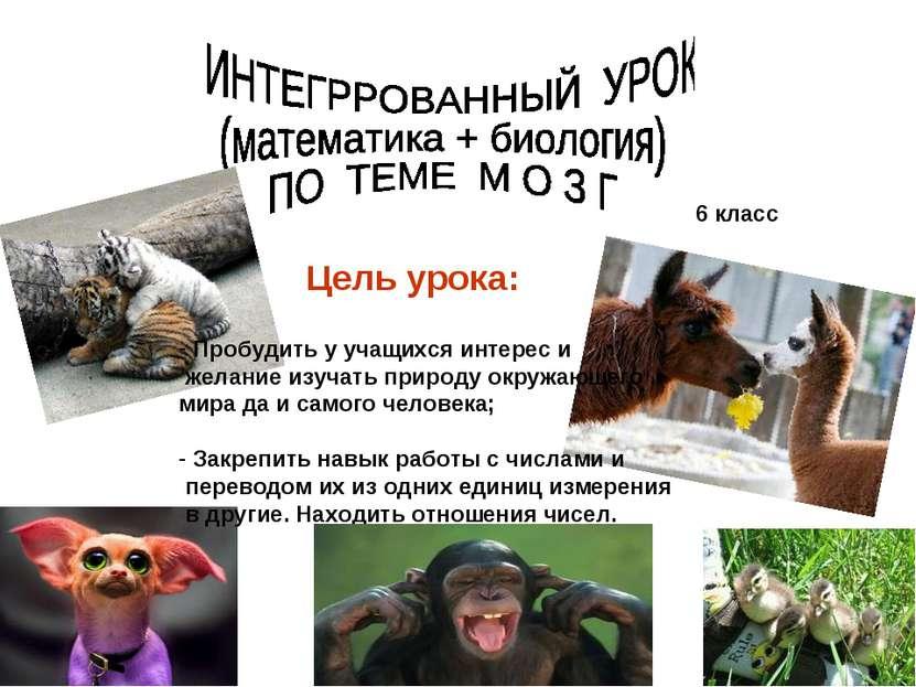 6 класс Цель урока: Пробудить у учащихся интерес и желание изучать природу ок...