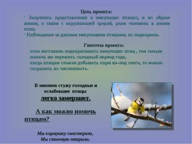 В зимнюю стужу голодные и ослабевшие птицы легко замерзают. А как можно помоч...