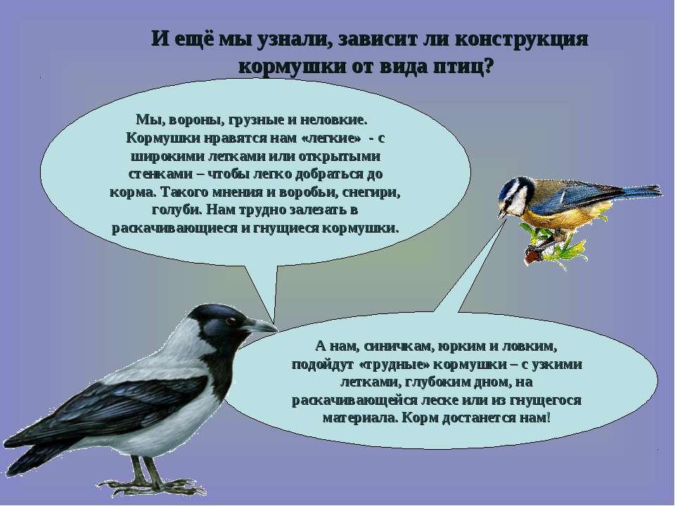 И ещё мы узнали, зависит ли конструкция кормушки от вида птиц? Мы, вороны, гр...