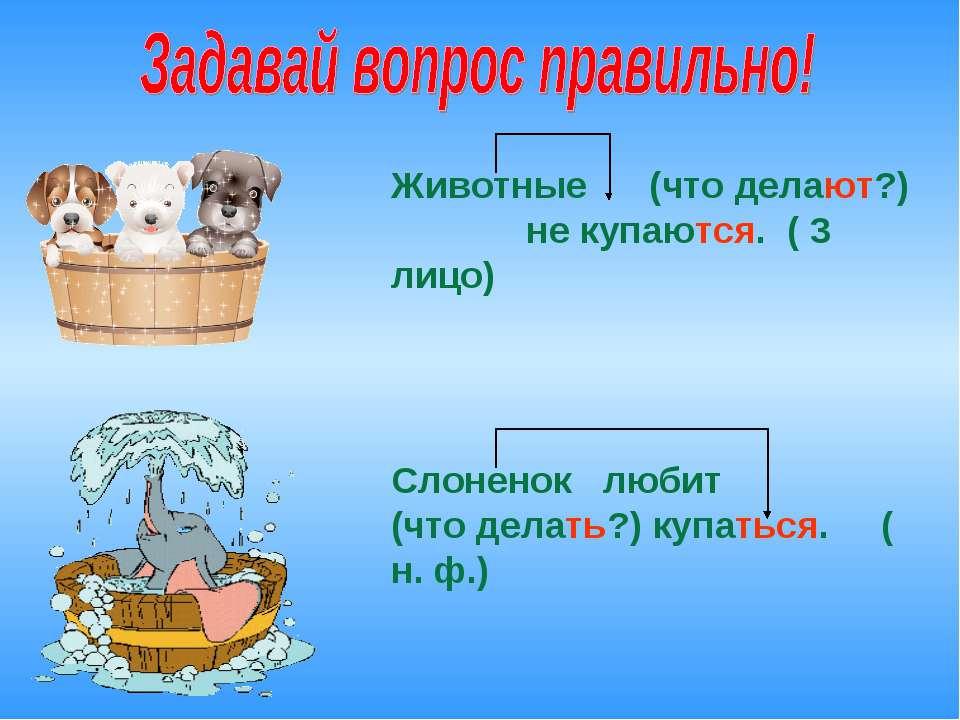 Животные (что делают?) не купаются. ( 3 лицо) Слоненок любит (что делать?) ку...