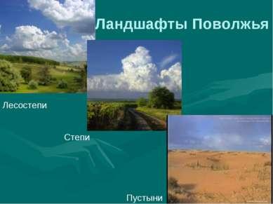 Ландшафты Поволжья Лесостепи Пустыни Степи