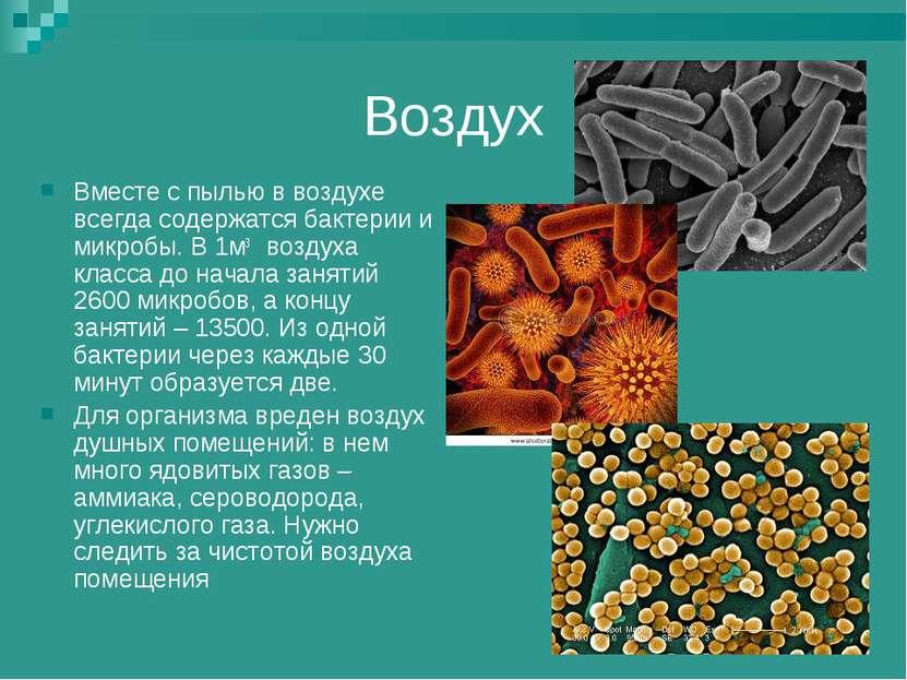 Воздух Вместе с пылью в воздухе всегда содержатся бактерии и микробы. В 1м3 в...