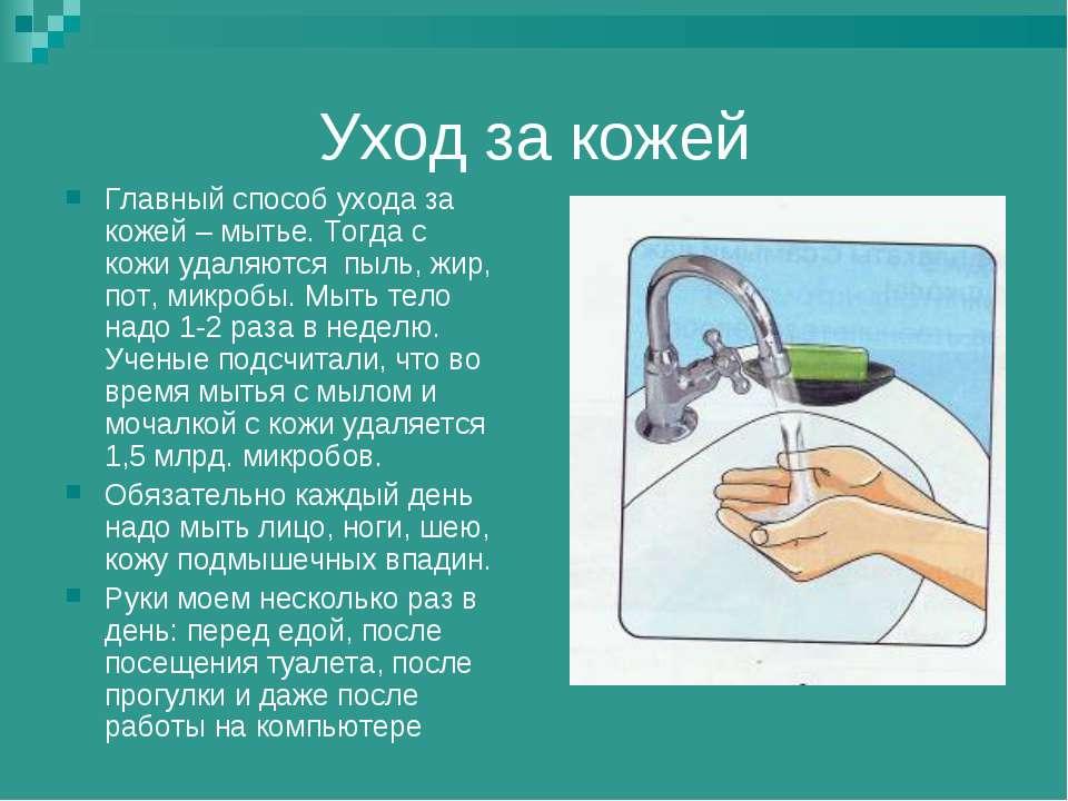 Уход за кожей Главный способ ухода за кожей – мытье. Тогда с кожи удаляются п...