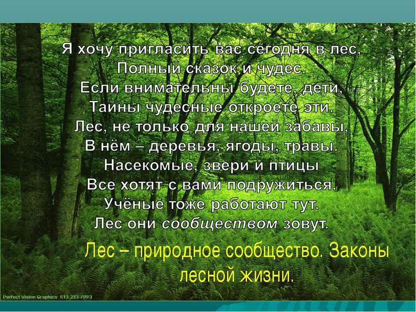 Лес – природное сообщество. Законы лесной жизни.