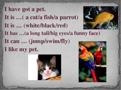 I have got a pet. It is …( a cat/a fish/a parrot) It is … (white/black/red) I...