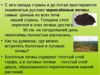 С юго-запада страны и до Алтая простираются знаменитые русские чернозёмные по...