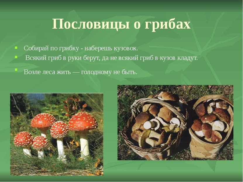 Пословицы о грибах Собирай по грибку - наберешь кузовок. Всякий гриб в руки б...