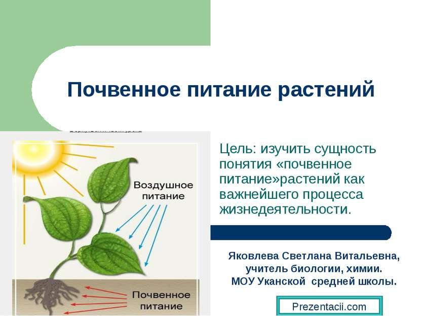 Почвенное питание растений Цель: изучить сущность понятия «почвенное питание»...