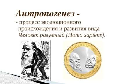 Антропогенез - - процесс эволюционного происхождения и развития вида Человек ...
