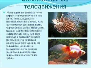 Волнообразные телодвижения Рыбьи плавники усиливают этот эффект, но предназна...