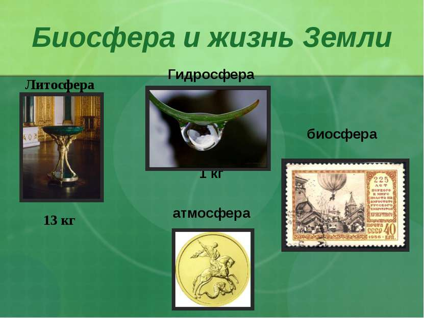 Взаимодействие живых существ друг с другом и с неживыми телами формирует един...