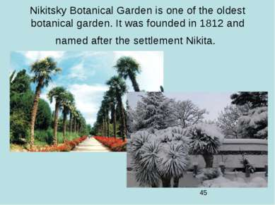 Nikitsky Botanical Garden is one of the oldest botanical garden. It was found...