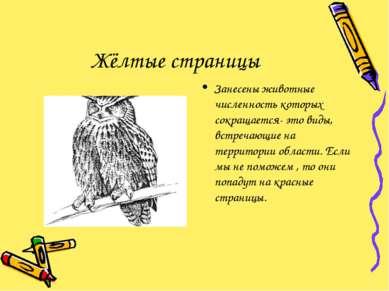 Жёлтые страницы Занесены животные численность которых сокращается- это виды, ...
