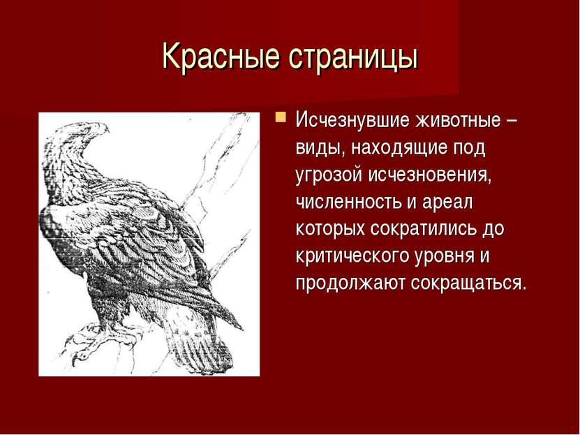 Красные страницы Исчезнувшие животные – виды, находящие под угрозой исчезнове...