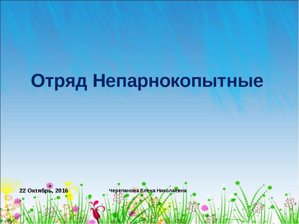 * Черепанова Елена Николаевна Отряд Непарнокопытные Черепанова Елена Николаевна