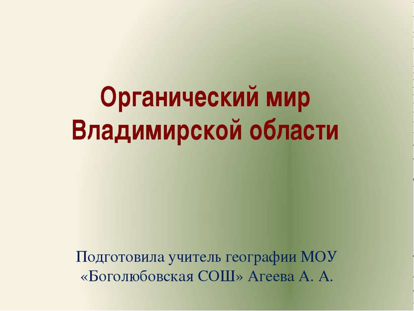 Органический мир Владимирской области Подготовила учитель географии МОУ «Бого...