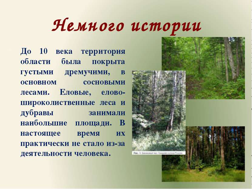 Немного истории До 10 века территория области была покрыта густыми дремучими,...