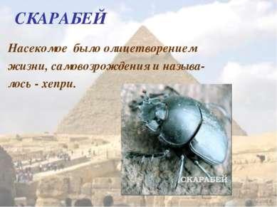 СКАРАБЕЙ Насекомое было олицетворением жизни, самовозрождения и называ- лось ...