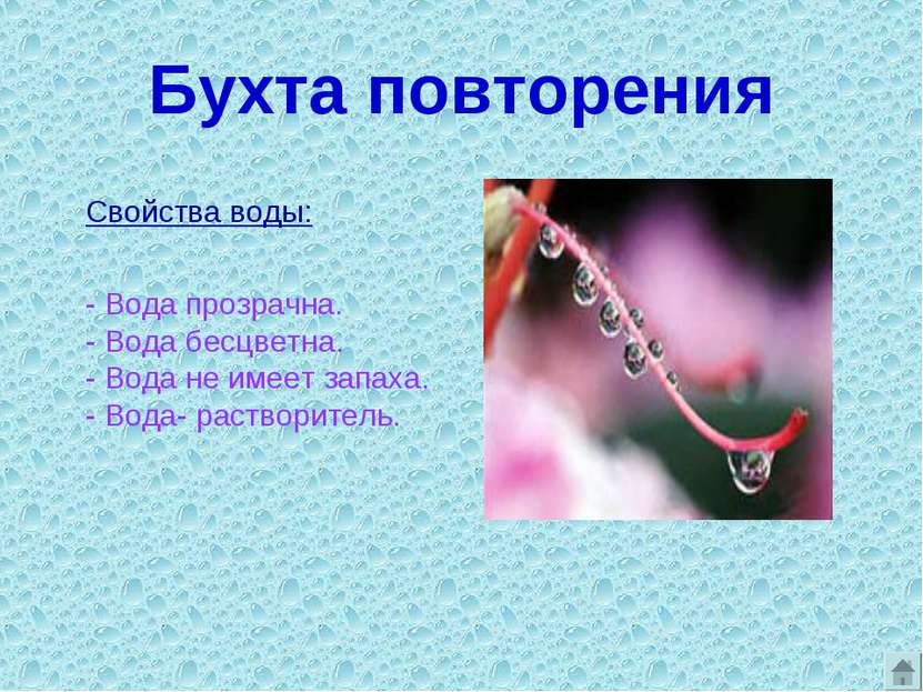 Бухта повторения Свойства воды: - Вода прозрачна. - Вода бесцветна. - Вода не...