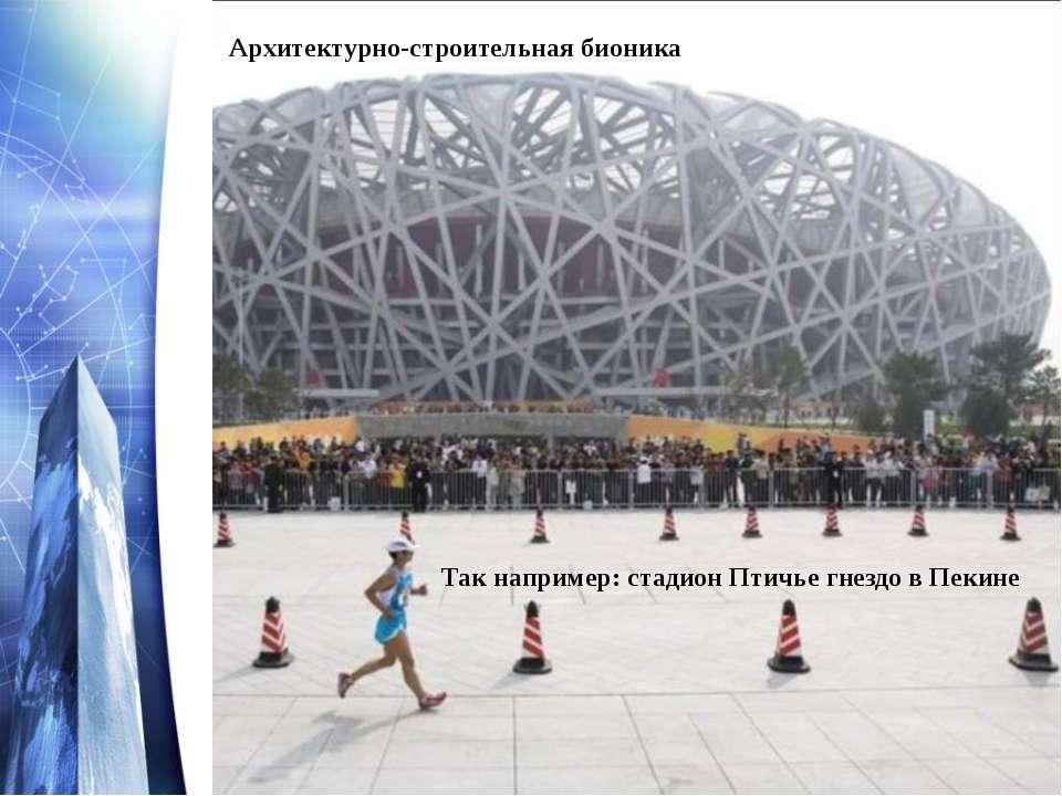 Так например: стадион Птичье гнездо в Пекине Архитектурно-строительная бионика