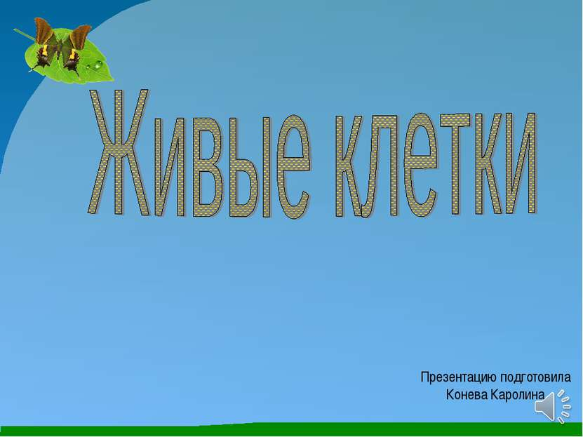 Презентацию подготовила Конева Каролина