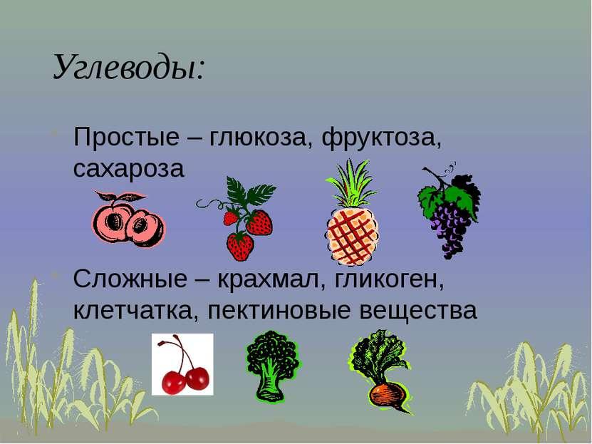 Углеводы: Простые – глюкоза, фруктоза, сахароза Сложные – крахмал, гликоген, ...