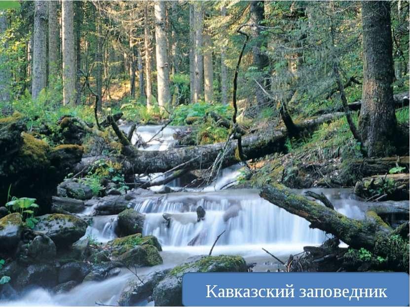Может ли человек уменьшить своё воздействие на природу? Очистные сточных вод ...