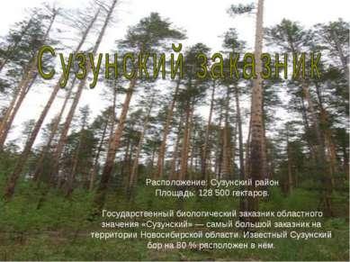 Расположение: Сузунский район Площадь: 128 500 гектаров.  Государственный би...