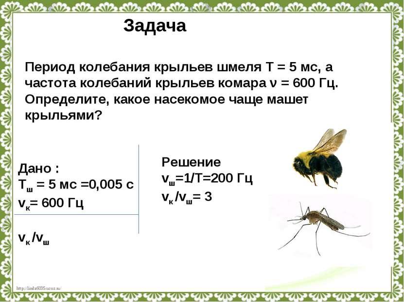Период колебания крыльев шмеля T=5мс, а частота колебаний крыльев комара ν...