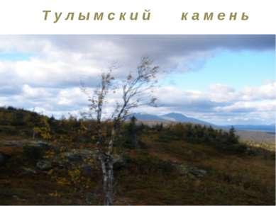 Т у л ы м с к и й к а м е н ь Тулымский камень является высшей точкой Пермско...