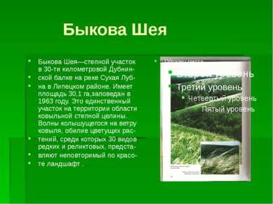 Быкова Шея Быкова Шея—степной участок в 30-ти километровой Дубнин- ской балке...