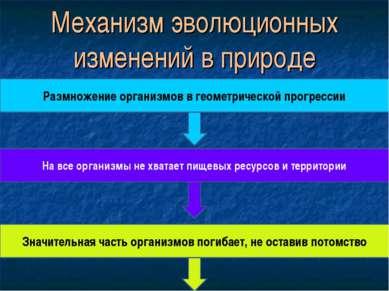 Механизм эволюционных изменений в природе Размножение организмов в геометриче...