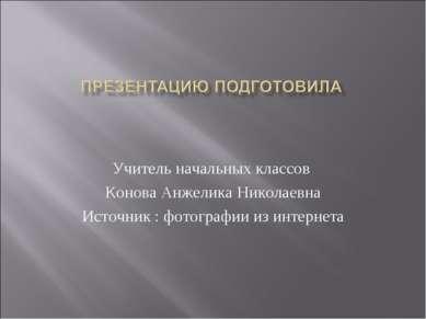 Учитель начальных классов Конова Анжелика Николаевна Источник : фотографии из...