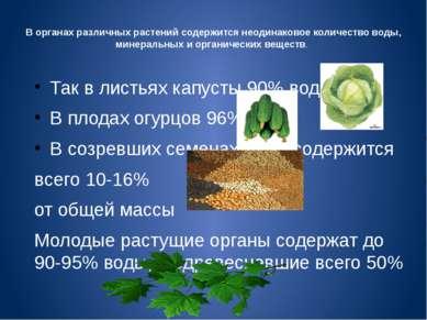 В органах различных растений содержится неодинаковое количество воды, минерал...
