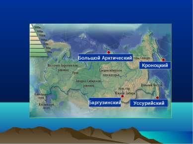 Баргузинский Уссурийский Большой Арктический Кроноцкий