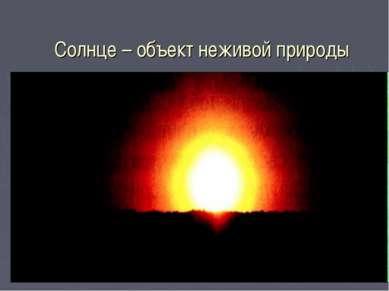 Солнце – объект неживой природы