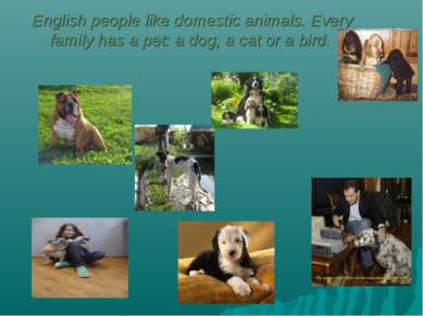 English people like domestic animals. Every family has a pet: a dog, a cat or...
