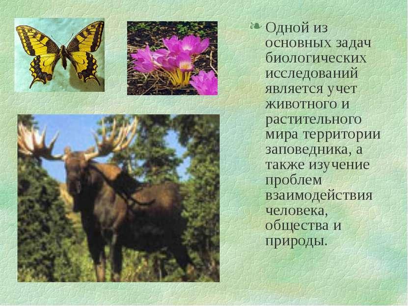 Одной из основных задач биологических исследований является учет животного и ...