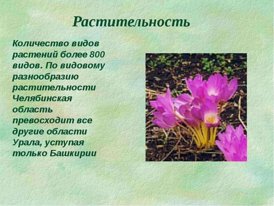 Растительность Количество видов растений более 800 видов. По видовому разнооб...