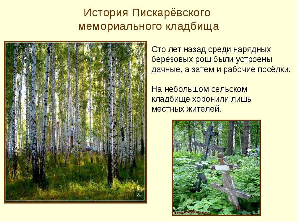 История Пискарёвского мемориального кладбища Сто лет назад среди нарядных бер...