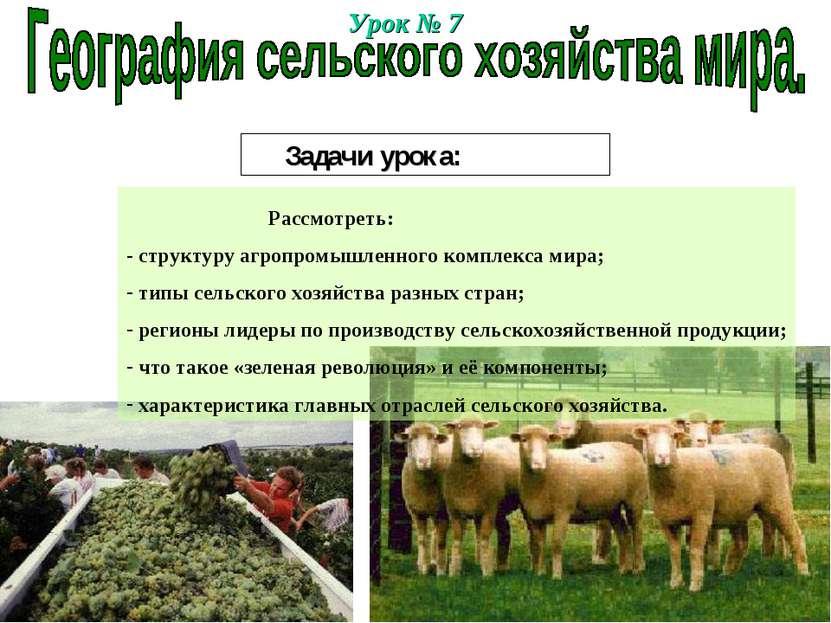 Урок № 7 Задачи урока: Рассмотреть: - структуру агропромышленного комплекса м...