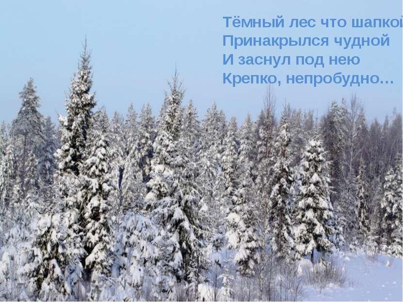 Тёмный лес что шапкой Принакрылся чудной И заснул под нею Крепко, непробудно…