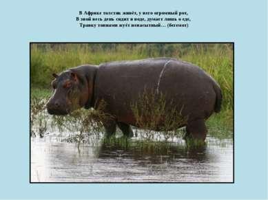 В Африке толстяк живёт, у него огромный рот, В зной весь день сидит в воде, ...